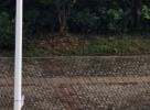 庐江晨光路与内环路,一白车失控冲进辅道撞上路边连停两车
