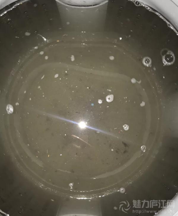 我被家里的洗衣机给恶心到了!里面全是霉菌,难怪最近身上有点痒的